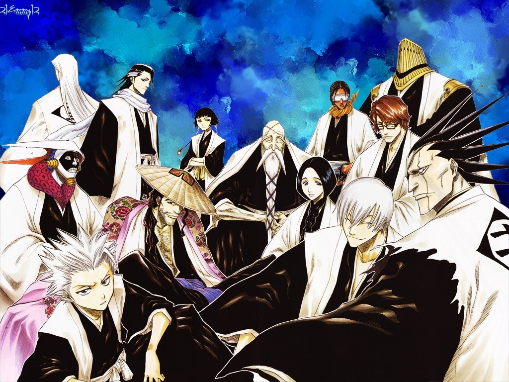 Bleach Gotei 13