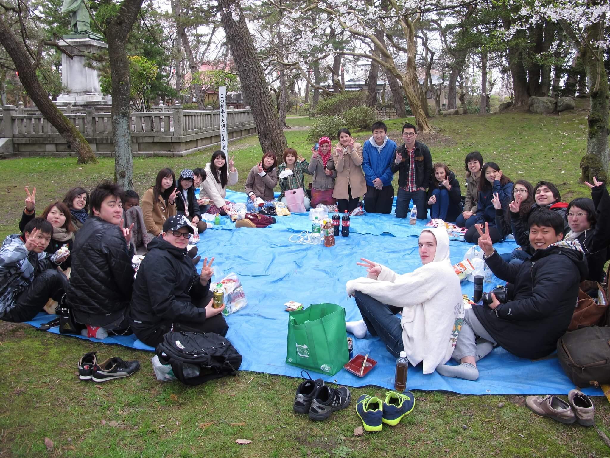 hanami akita