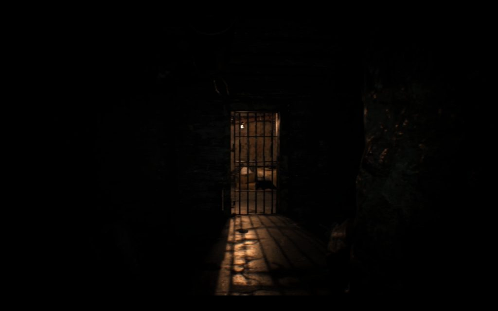 Resident Evil 7 Cave
