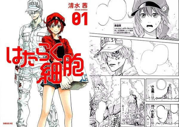 Hataraku Saibou BLACK - Manga Termina Primeira Parte | Hataraku Saibou - Investigador Elogia e Explica Episódio 7