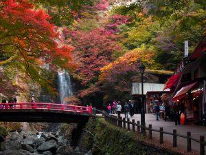 Osaka - Guia do Gaijin para o Japão