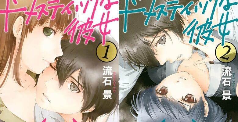 Domestic na Kanojo - Recomendação Anime Inverno 2019 - Adaptações Manga