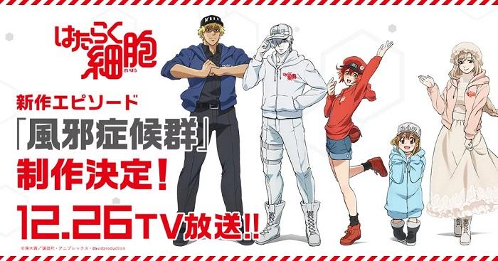 Hataraku Saibou - Anime recebe Novo Episódio em Dezembro