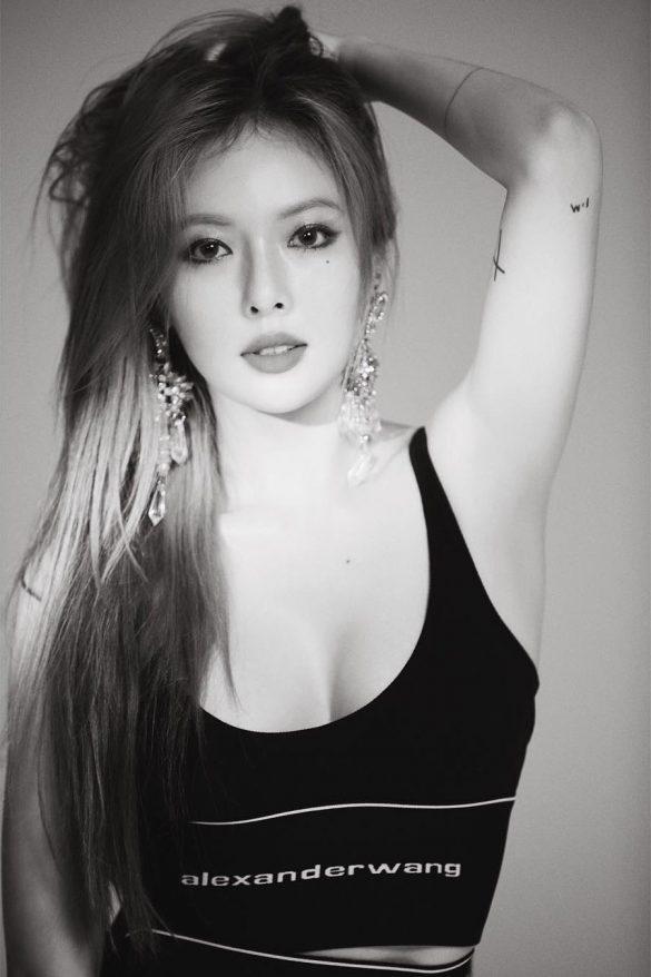 Cantinho do Kpop – BTS, Apink e BLACKPINK