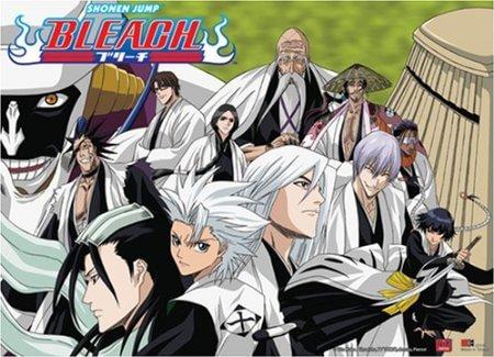 Às Compras pelo Japão V - Poster Bleach Capitães Gotei 13