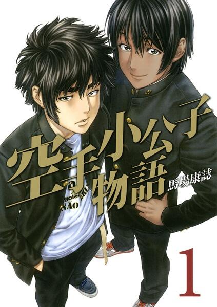 Karate Shoukoushi Monogatari - Análise - capa