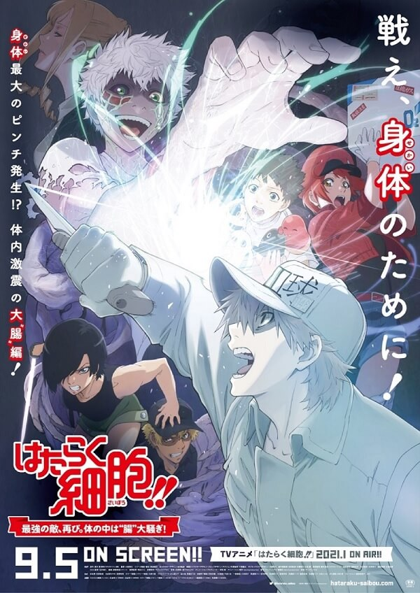 Hataraku Saibou - Anime Cinematográfico recebe Vídeo Promo