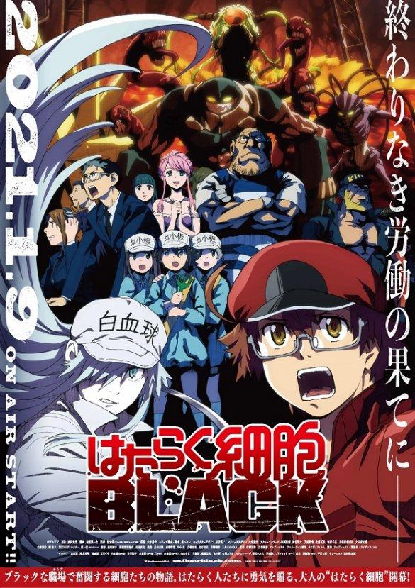 Hataraku Saibou BLACK – Anime recebe 2.º Vídeo Promo