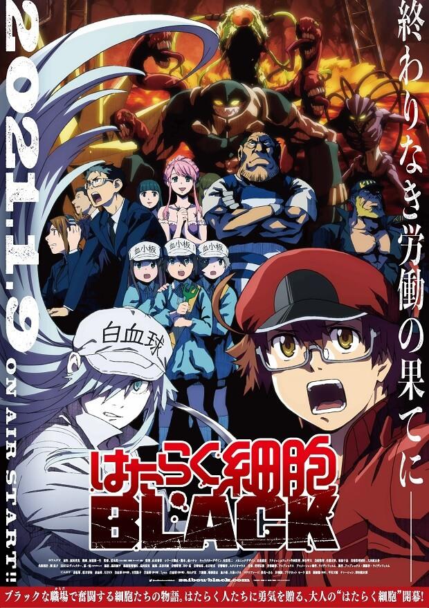 Hataraku Saibou BLACK – Anime revela dia de Estreia