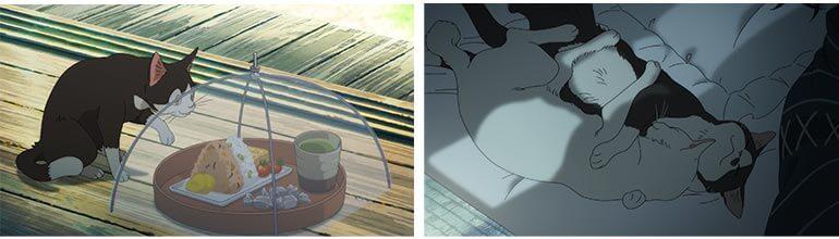 Gatos em anime filme Umibe no Etranger