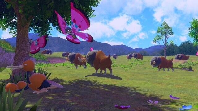 New Pokémon Snap – Habitat de planicie